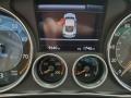 Beluga - Continental GT Speed Photo No. 23
