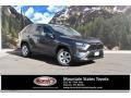 Magnetic Gray Metallic 2020 Toyota RAV4 LE AWD