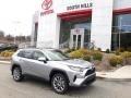 Silver Sky Metallic 2020 Toyota RAV4 XLE Premium AWD