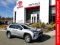 Silver Sky Metallic - RAV4 LE AWD Photo No. 1