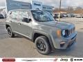 Sting-Gray 2020 Jeep Renegade Sport 4x4