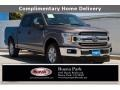 2019 Stone Gray Ford F150 XL SuperCrew #138336130