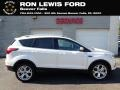 2019 White Platinum Ford Escape Titanium 4WD #138487028