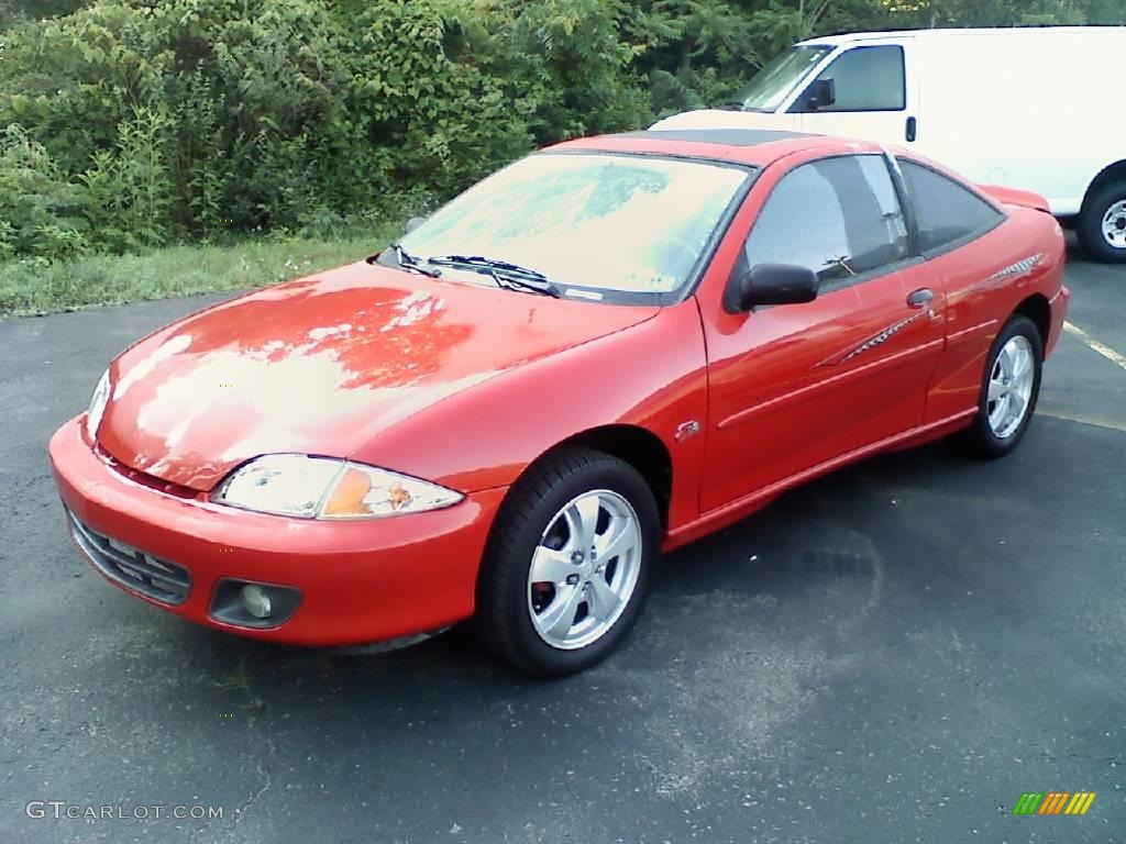 Red cavalier image