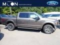 2020 Stone Gray Ford F150 XLT SuperCrew 4x4 #139486916