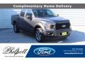 2019 Magnetic Ford F150 STX SuperCrew 4x4 #139788653