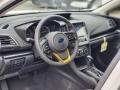 Gray Steering Wheel Photo for 2021 Subaru Crosstrek #139951878