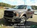 2018 Stone Gray Ford F150 XLT SuperCrew 4x4 #140070179