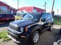 2020 Black Jeep Renegade Sport 4x4 #140095187