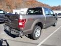 2020 Stone Gray Ford F150 XL SuperCrew 4x4  photo #2