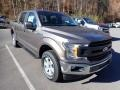2020 Stone Gray Ford F150 XL SuperCrew 4x4  photo #3