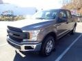 2020 Stone Gray Ford F150 XL SuperCrew 4x4  photo #5