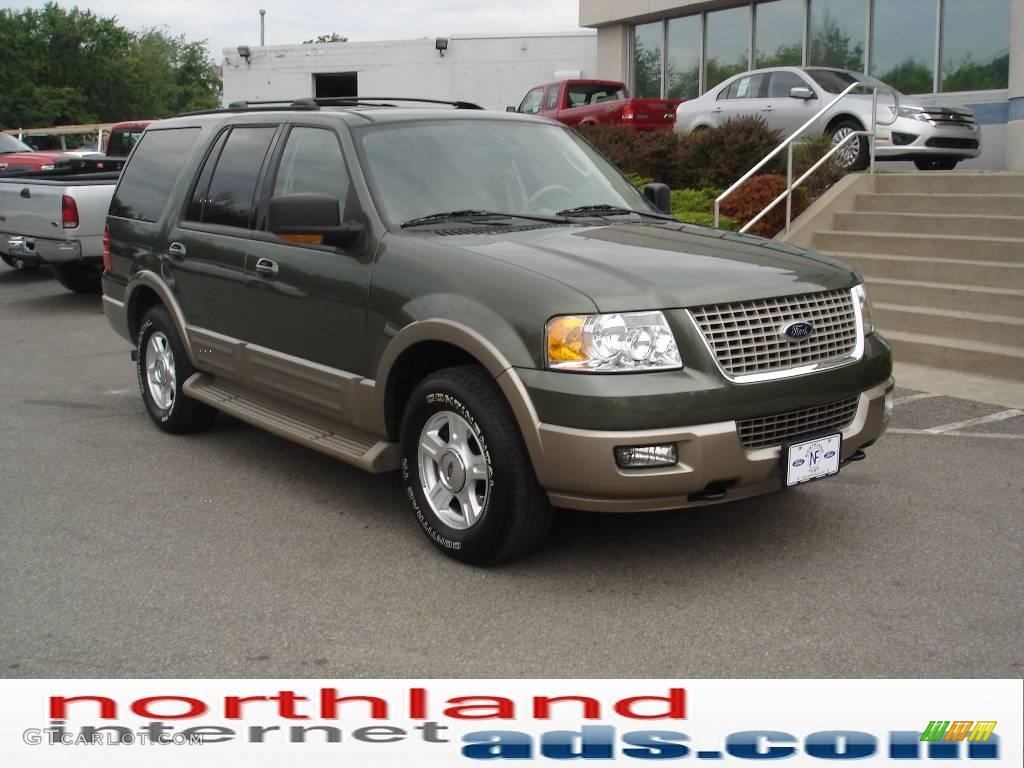 2004 estate green metallic ford expedition eddie bauer 4x4. Black Bedroom Furniture Sets. Home Design Ideas