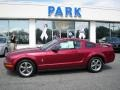 2006 Redfire Metallic Ford Mustang V6 Premium Coupe  photo #20