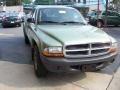 2004 Timberline Green Pearl Dodge Dakota SXT Club Cab  photo #11