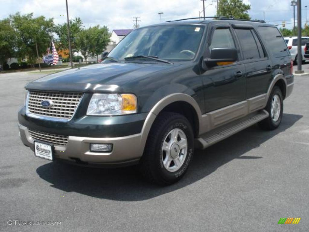 2003 ford expedition eddie bauer interior parts. Black Bedroom Furniture Sets. Home Design Ideas