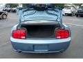2007 Windveil Blue Metallic Ford Mustang GT Premium Coupe  photo #19