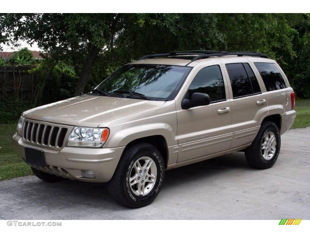 1999 jeep grand cherokee limited 4x4 champagne pearl color camel. Black Bedroom Furniture Sets. Home Design Ideas