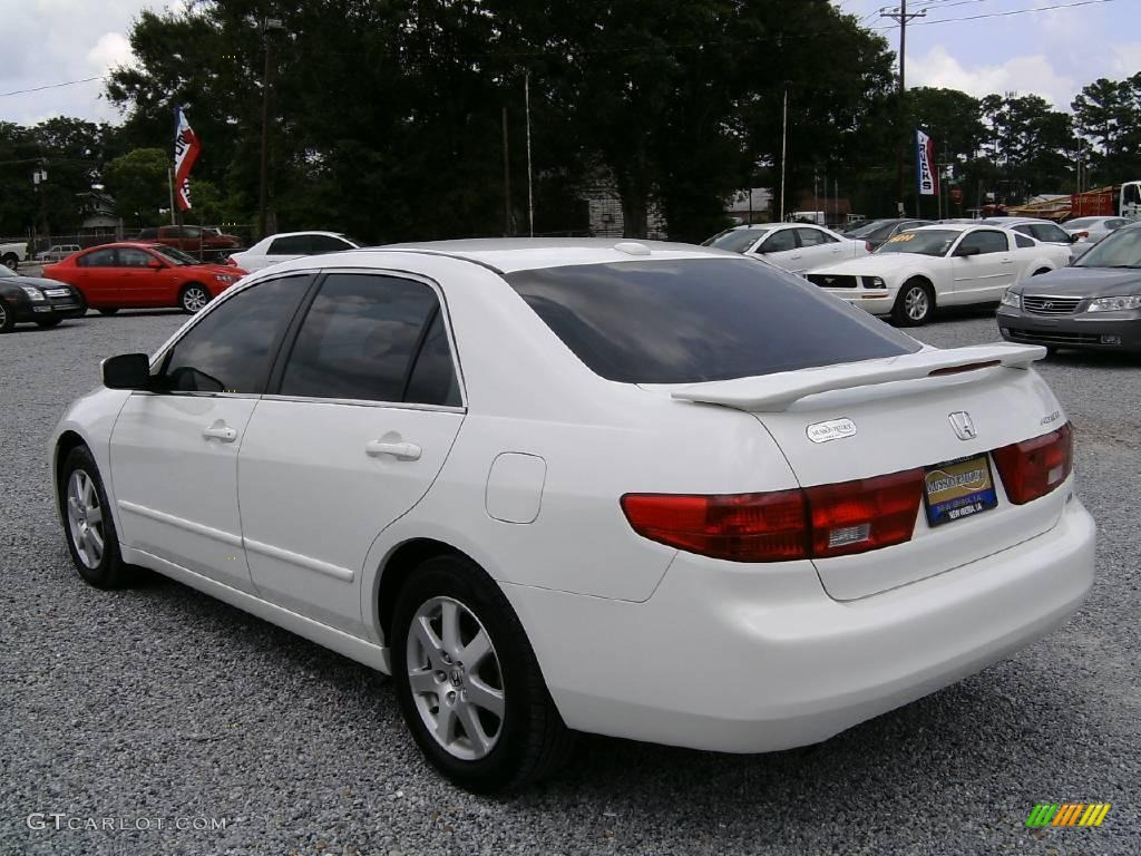 2005 taffeta white honda accord ex l v6 sedan 15708147 photo 5 car color. Black Bedroom Furniture Sets. Home Design Ideas