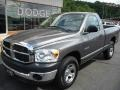2008 Mineral Gray Metallic Dodge Ram 1500 SXT Regular Cab  photo #2