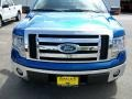 Blue Flame Metallic 2009 Ford F150 Gallery