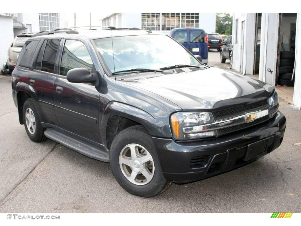 2006 TrailBlazer LS 4x4   Dark Gray Metallic / Light Gray Photo #1
