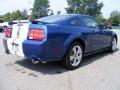 2007 Vista Blue Metallic Ford Mustang GT Premium Coupe  photo #5