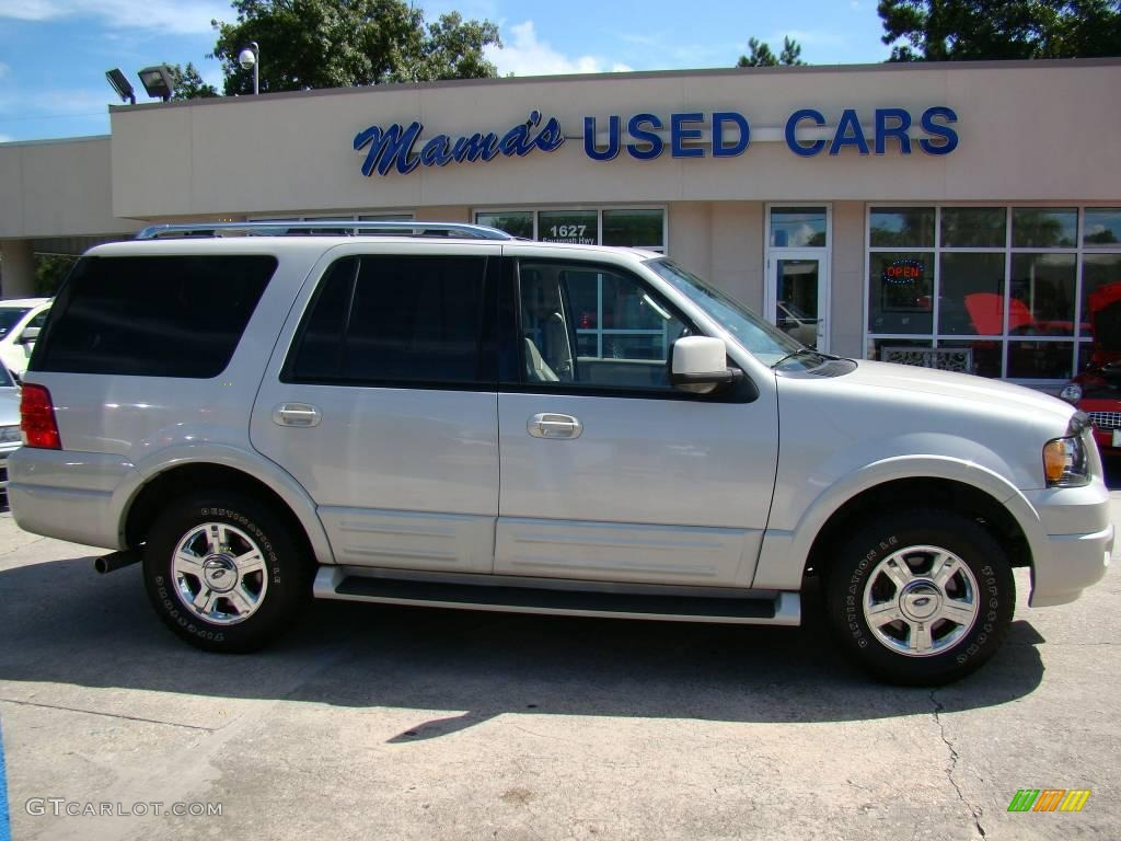 Silver Birch Metallic Ford Expedition