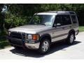 Blenheim Silver Metallic 2001 Land Rover Discovery II Gallery