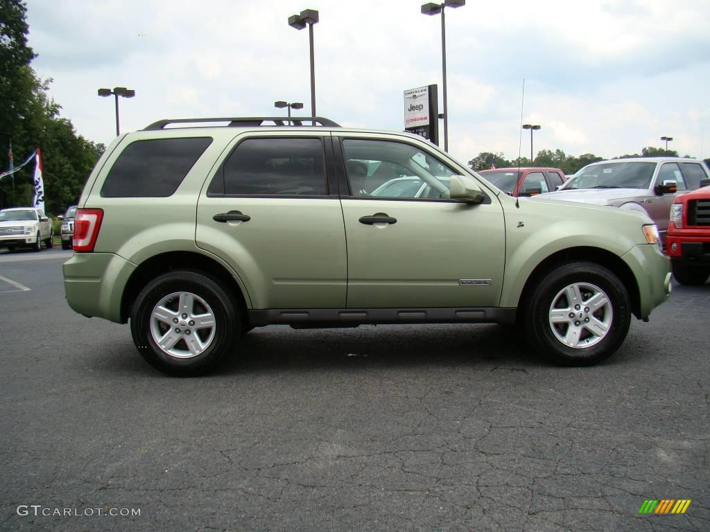 kiwi green metallic 2008 ford escape hybrid 4wd exterior photo 17011295. Black Bedroom Furniture Sets. Home Design Ideas