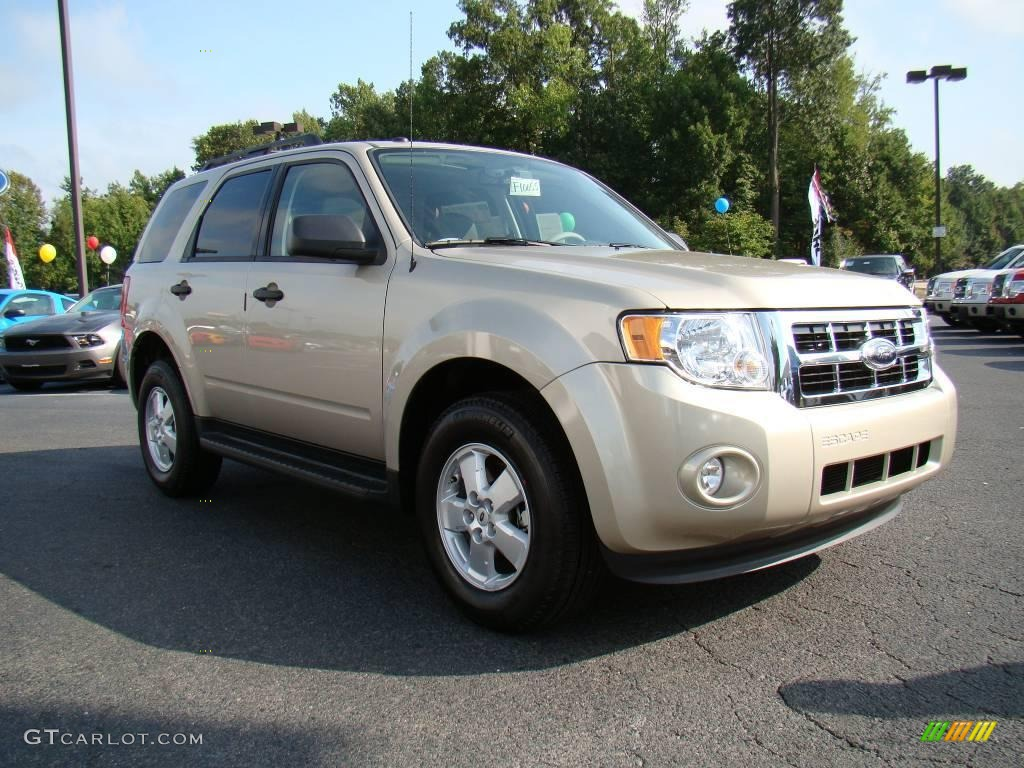 2010 escape xlt gold leaf metallic stone photo 1