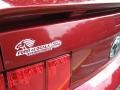 2007 Redfire Metallic Ford Mustang V6 Premium Coupe  photo #10
