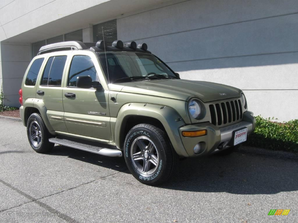 2003 cactus green pearl jeep liberty renegade 4x4 18572729 car color galleries. Black Bedroom Furniture Sets. Home Design Ideas