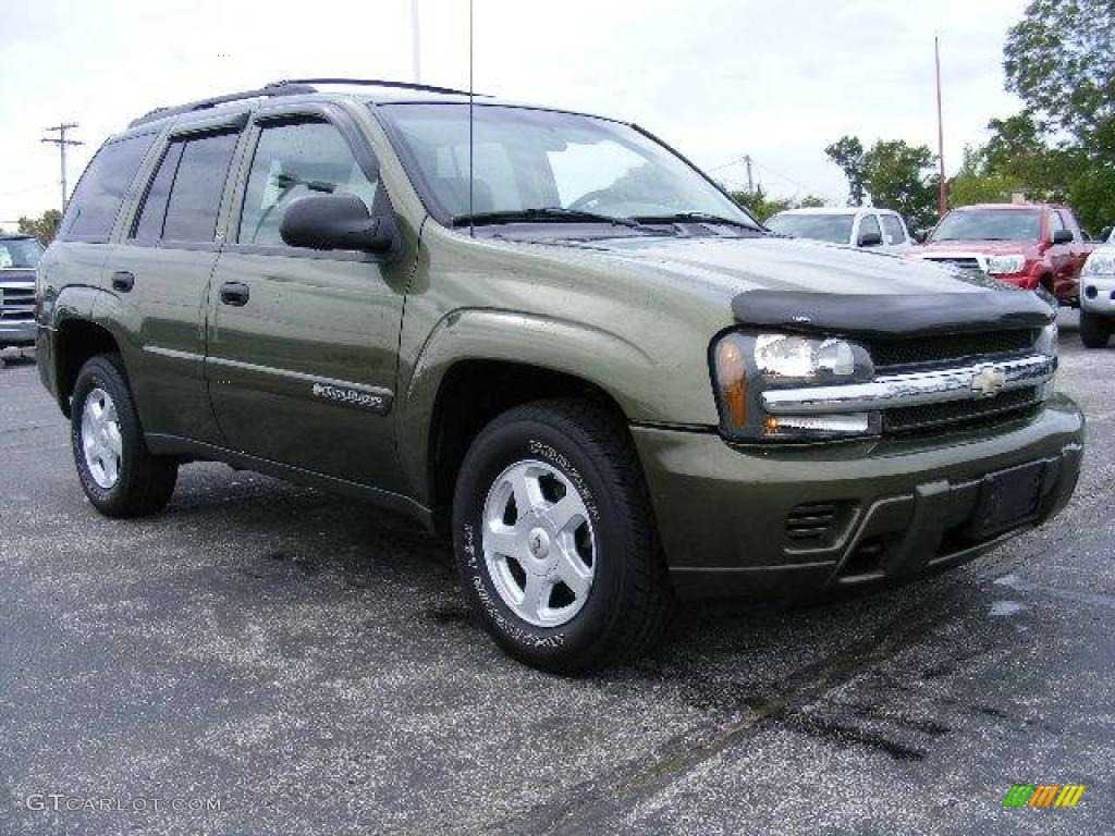 2002 chevrolet trailblazer ls 4x4 medium sage green metallic color. Cars Review. Best American Auto & Cars Review