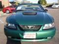2002 Electric Green Metallic Ford Mustang V6 Convertible  photo #5