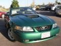 2002 Electric Green Metallic Ford Mustang V6 Convertible  photo #6