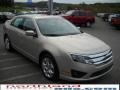 2010 Smokestone Metallic Ford Fusion SE V6  photo #4