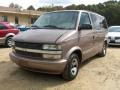 2002 Medium Bronzemist Metallic Chevrolet Astro LS  photo #2