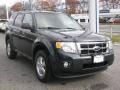 2009 Black Pearl Slate Metallic Ford Escape XLT 4WD  photo #2