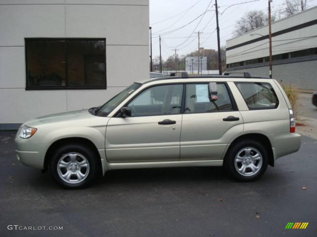 Forester Paint Colors