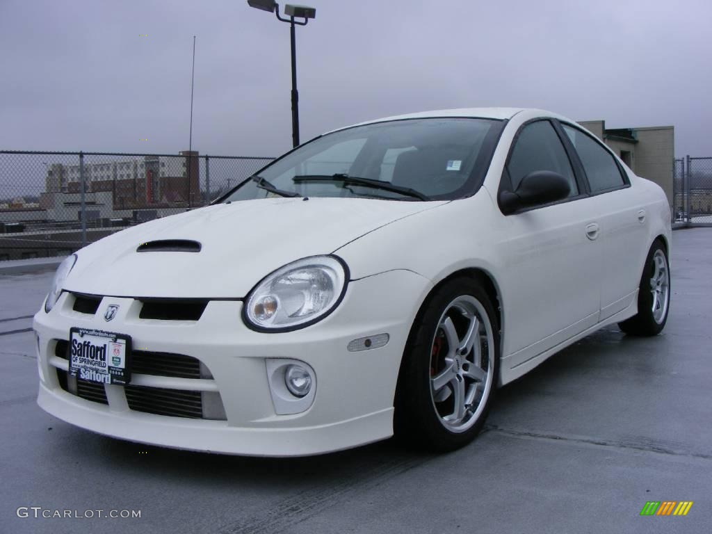 2005 Stone White Dodge Neon Srt 4 22330796 Photo 5