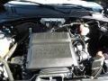2009 Sport Blue Metallic Ford Escape XLT V6  photo #19