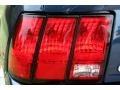 2001 True Blue Metallic Ford Mustang GT Convertible  photo #23