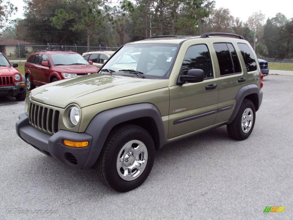 2004 cactus green pearl jeep liberty sport 23461900. Black Bedroom Furniture Sets. Home Design Ideas