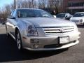 Light Platinum - STS 4 V6 AWD Photo No. 3