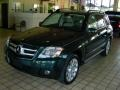 Jade Green Metallic 2010 Mercedes-Benz GLK 350