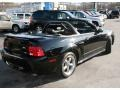 2002 Black Ford Mustang GT Convertible  photo #5