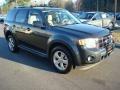 2009 Black Pearl Slate Metallic Ford Escape Limited V6  photo #6