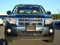 2009 Black Pearl Slate Metallic Ford Escape Limited V6  photo #7