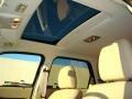 2009 Black Pearl Slate Metallic Ford Escape Limited V6  photo #12